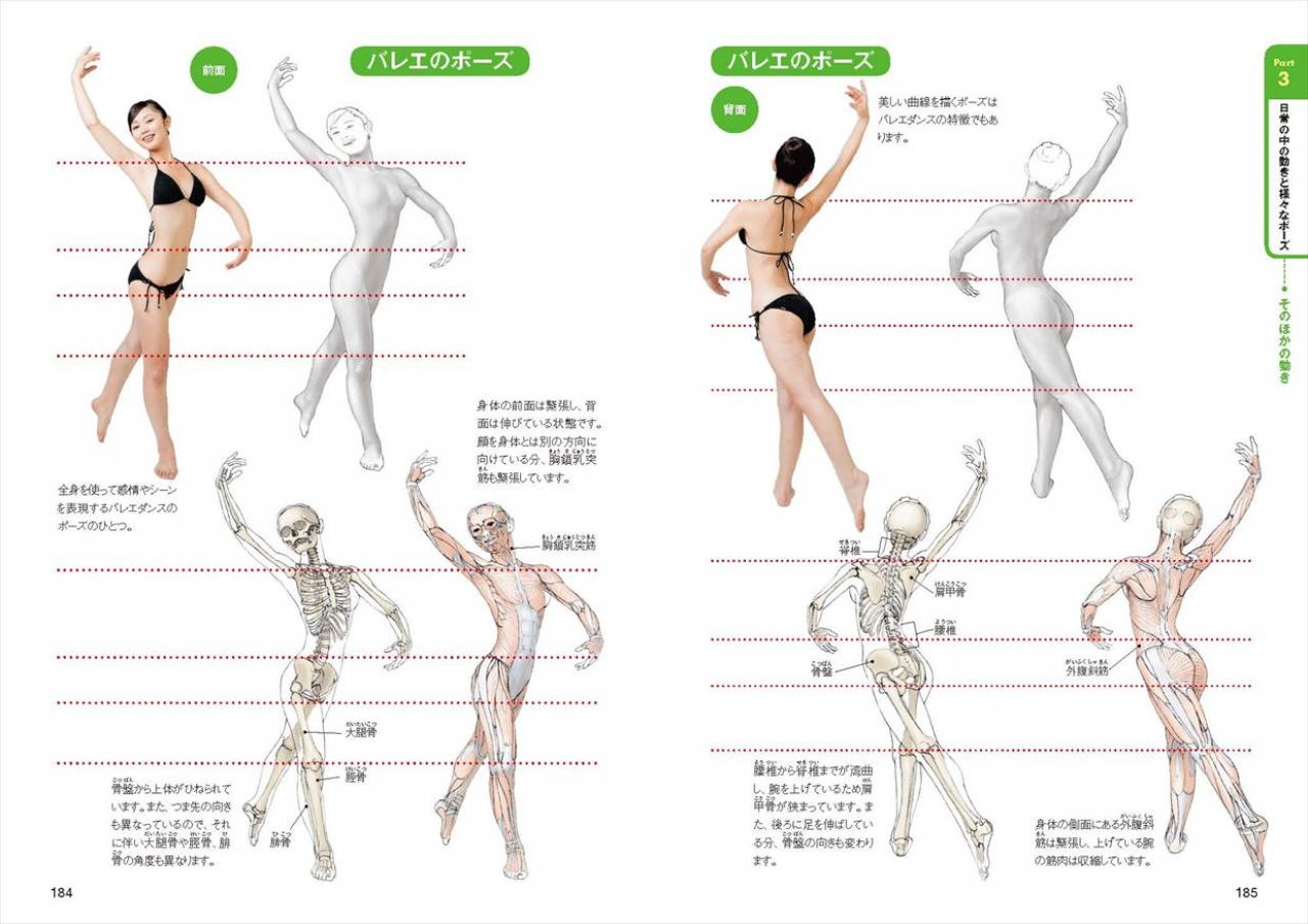 オールカラー版 人体の描き方マスターブック ナツメ社