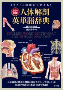 カラー図解 人体解剖英単語辞典の表紙