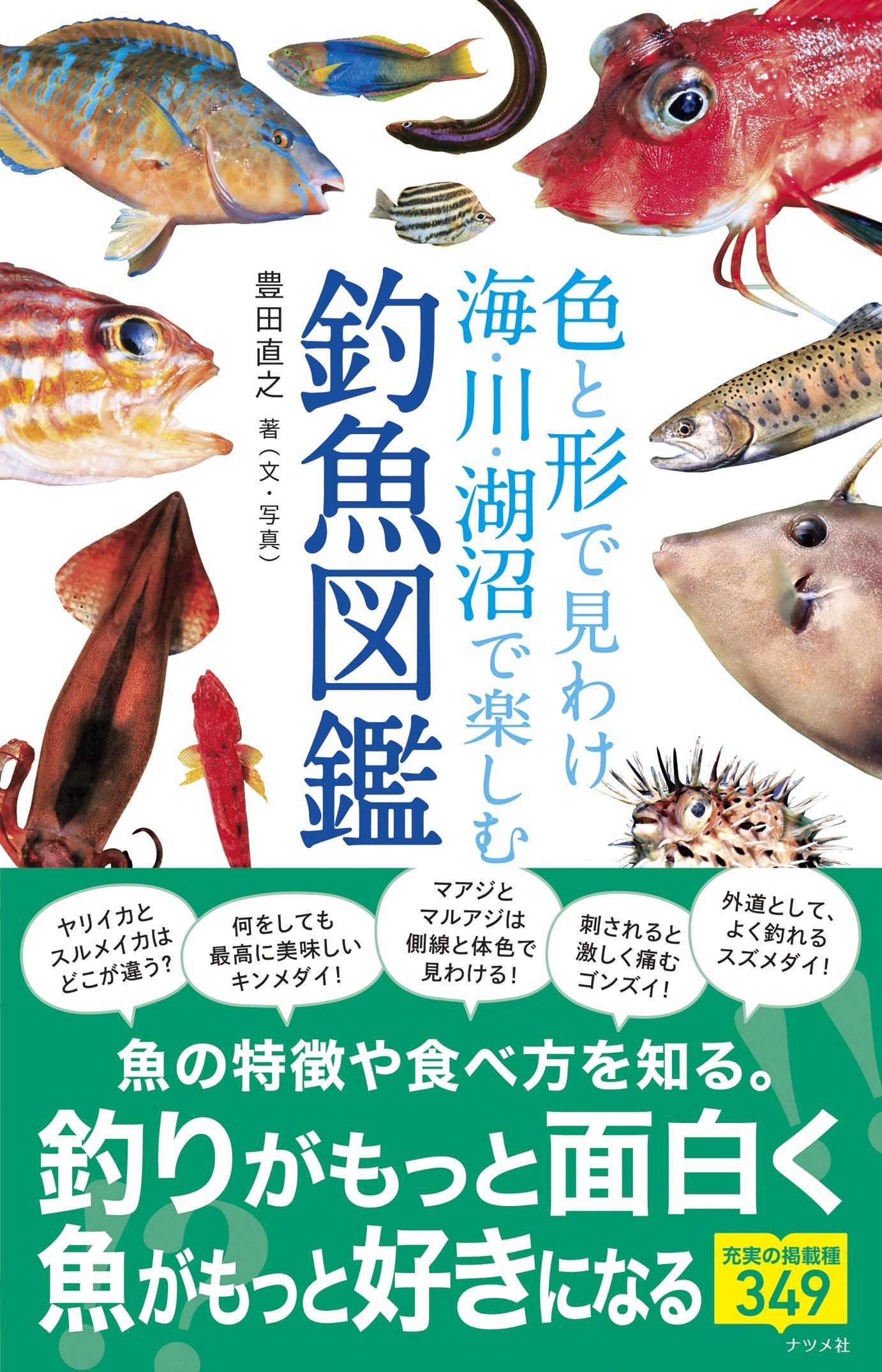 色と形で見わけ 海・川・湖沼で楽しむ 釣魚図鑑の表紙